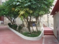 jardin-tendal2